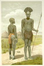 Domorody bojovnik