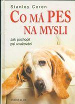 Co ma pes na mysli  Jak pochopit psi uvazovani