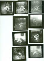 Konvolut soukromych fotografii