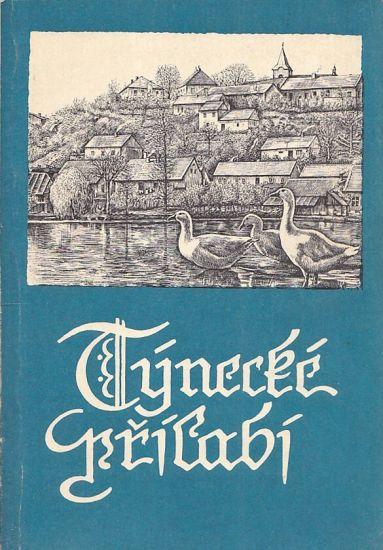Tynecke prilabi - Vlastnik Josef | antikvariat - detail knihy