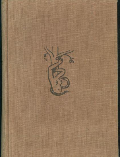Zivot muze a zeny v lasce a manzelstvi - Panyrek Duchoslav  usporadal | antikvariat - detail knihy