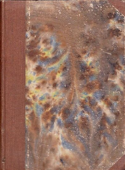 Kapitoly o zidovstvi a zidovstvu  dil II  - Lederer Edvard | antikvariat - detail knihy