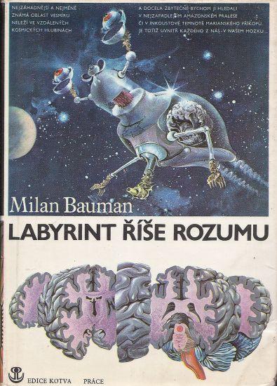 Labyrint rise rozumu - Bauman Milan   antikvariat - detail knihy