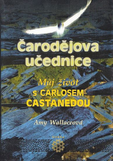 Carodejova ucednice - Wallace Amy | antikvariat - detail knihy